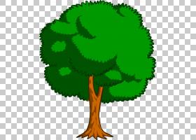 绿叶水彩画,草,植物茎,绿色,叶,植物,彩色铅笔,文本,水彩画,分支,
