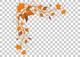 秋季背景秋季边界,边界,字体,线路,橙色,模式,分支,设计,植物群,