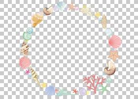海星卡通,线路,圆,花瓣,水彩画,海,贝壳,绘图,海星,