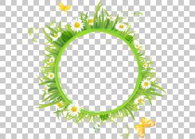 背景花卉夏日画框,花卉,草,绿色,植物群,线路,符号,矩形,圆,模式,
