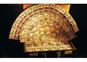美元,货币,壁纸,(2)