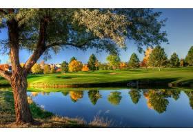 高尔夫球,课程,高尔夫球,湖,树,反射,壁纸,