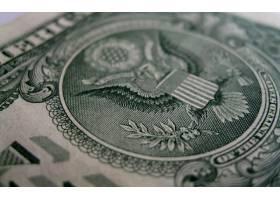 美元,货币,壁纸,(6)