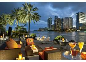 城市,城市,房间,阳台,手掌,树,椅子,迈阿密,佛罗里达,建筑物