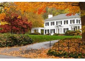 房子,建筑物,秋天,叶子,树,壁纸,