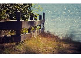 栅栏,壁纸,(16)