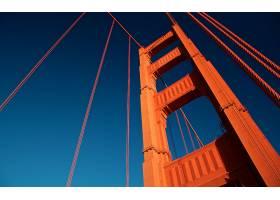 金色的,大门,桥梁,壁纸,