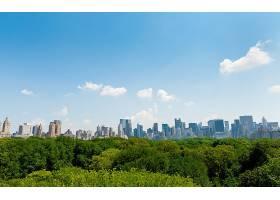 城市,城市,中心的,公园,曼哈顿,新建,约克,壁纸,