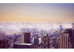 城市,城市,城市风光,体系结构,建筑物,桥梁,摩天大楼,雾,日
