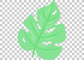 夏花背景,植物茎,花,草,树,线路,植物群,植物,叶,绿色,季节,卡通,