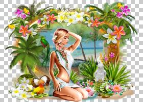 夏花背景,草,春天,植物群,植物,夏天,花,