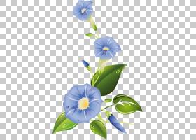 牵牛花夏花,植物,书,抽象艺术,剪影,植物茎,纸张,叶,夏花,牵牛花,