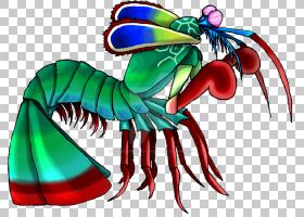 龙画,机翼,龙虾,昆虫,龙,海鲜,齿趾龙(Odontodactylus),动物,线条