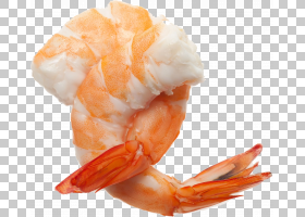 虾动画,橙色,加勒比海虾,食物,树鳃亚目,十足,美国龙虾,虾和虾作