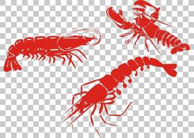 虾动画,红色,线路,海鲜,十足,动物,模板,鱼,徽标,短尾猴(Palinuru