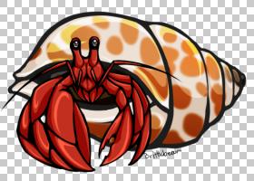 海鲜背景,橙色,龙虾,海鲜,食物,爪子,十足,动画,宠物,着色簿,动物