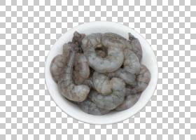 虾动画,食谱,翠鸟,笑声,对虾,美国龙虾,食物,鸟巢,对虾养殖,猛禽,
