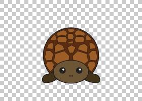 海龟背景,棕色,长颈鹿,Balaenoptera,卡通,海,章鱼,鲸鱼,乌龟,长图片