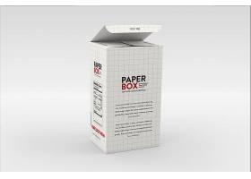 时尚简洁竖立的盒子LOGO展示样机