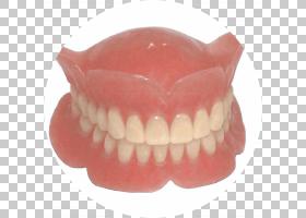 口部卡通,嘴,嘴唇,桥梁,下颚,美容牙科,修复学,牙科实验室,牙齿,