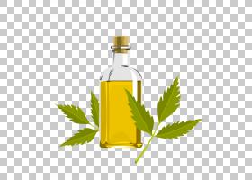 茶树油,草药,替代医学,瓶子,植物,玻璃瓶,食用油,液体,大豆油,叶,