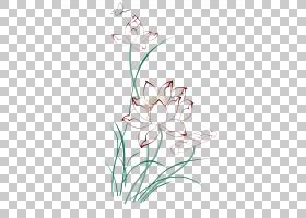 花卉剪贴画背景,白色,植物茎,切花,种子植物,花,插花,花卉设计,花