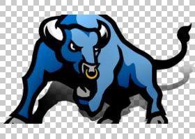 美国足球背景,野生动物,水牛,西密歇根野马,水牛,高校足球,第一分