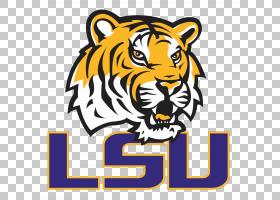 美国足球背景,黑色,老虎,野生动物,头部,口吻,路易斯安那州立大学