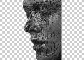 白树,历史,结构,岩石,黑白,古代史,伪影,树,石雕,绘画,艺术家,排