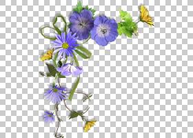粉红色花卡通,草本植物,一年生植物,野花,紫罗兰,中提琴,菊苣,春