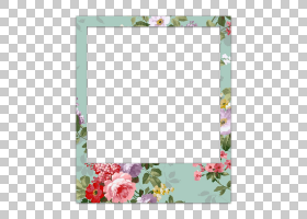 粉红色花架,镜子,正方形,矩形,插花,紫色,花瓣,植物群,相框,绿色,
