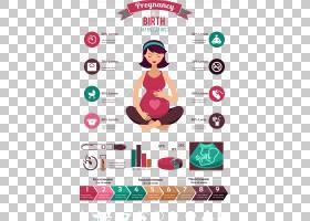 怀孕动画,徽标,广告,关节,文本,技术标准,数据,信息图,怀孕,