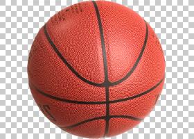 篮球卡通,橙色,体育,帕隆,团队运动,篮球官员,球,篮球历史,首发阵图片