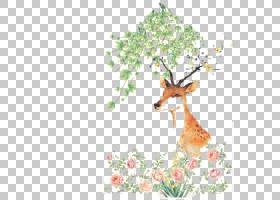 夏季海报背景,鹿角,分支,花,长颈鹿,花卉设计,树,驯鹿,鹿,叶,植物图片