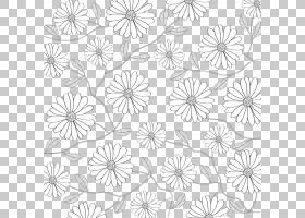 黑白花,线路,绘图,视觉艺术,圆,点,面积,对称性,植物群,植物,装饰