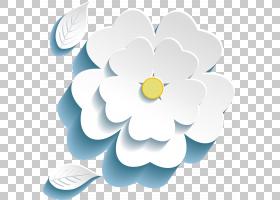 花卉剪贴画背景,花卉设计,植物,花瓣,切花,3D计算机图形学,花,三