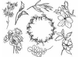 单色植物花卉线条素材