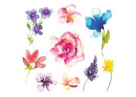 清新水彩植物花卉素材
