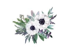时尚清新水彩植物花卉素材