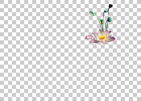莲花,矩形,线路,瓷砖,花瓣,花,黄色,紫色,地板,正方形,像素,光栅