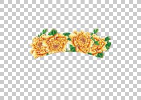 花卉背景,矩形,花卉设计,花瓣,黄金,红色,蓝色,花,中国风,黄色,