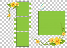 花卉背景,矩形,花卉设计,草,线路,花,黄色,叶,植物群,植物,思维导