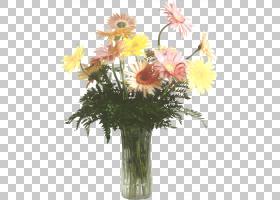 花卉背景,紫菀,花瓣,红掌,雏菊家庭,野花,黛西,花盆,插花,巴伯顿