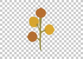 背景宝贝,花瓣,植物群,橙色,花,黄色,卡通,厨师,植物茎,婴儿,菊花