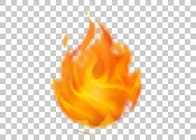 火焰,风味,橙色,花,黄色,花瓣,关门,火,文档,3D计算机图形学,火焰
