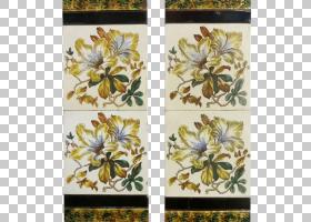 花卉背景,花,黄色,植物群,花卉设计,