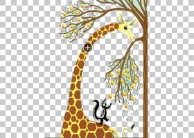 万维网,树,植物群,野生动物,视觉艺术,线路,长颈鹿,长颈鹿,分支,图片