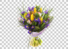 三月八日妇女节,番红花,插花,切花,野花,花卉设计,黄色,紫罗兰,紫