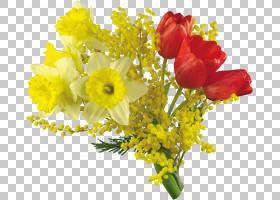 三月八日妇女节,花卉,花束,插花,切花,花卉设计,黄色,花瓣,花,植