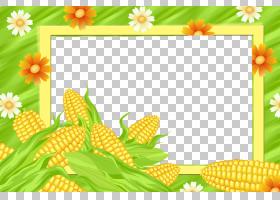 背景花框,草,黄色,花瓣,向日葵,草甸,植物群,相框,植物,花,玉米迷